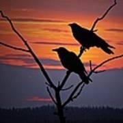 2 Ravens Art Print