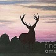 Red Stag At Dusk Art Print