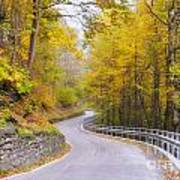 Road With Curves Art Print