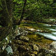 Rushing Mountain Stream Art Print