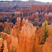 Sandstone Hoodoos Bryce Canyon  Art Print