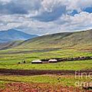 Savannah Landscape In Tanzania Art Print