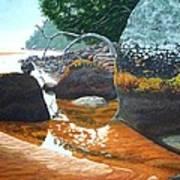Sealers Creek Art Print