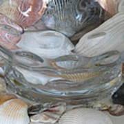 Shells In Bubble Bowl 2 Art Print