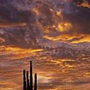 Silhouetted Saguaro Cactus Sunset At Dusk With Dramatic Clouds Art Print