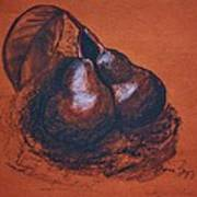 Simply Pears Art Print