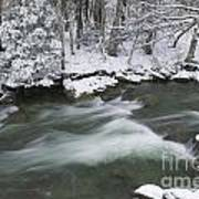 Snow Covered Pine Trees On The Side Of A River In The Winter. Art Print