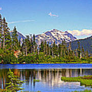 Spring In The Cascades Art Print
