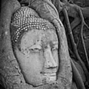 The Ancient City Of Ayutthaya Art Print