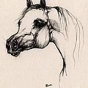 The Arabian Horse Art Print