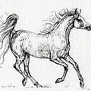 The Arabian Mare Running  Art Print