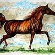 The Chestnut Arabian Horse Art Print