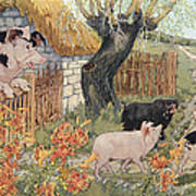 The Three Little Pigs Art Print