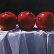 Three Pomegranates Art Print