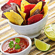 Tortilla Chips And Salsa Art Print