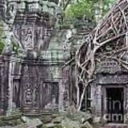 Tree Roots On Ruins At Angkor Wat Art Print by Sami Sarkis