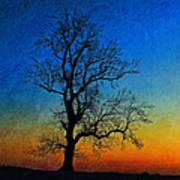 Tree Skeleton Art Print