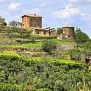 Tuscany - Montalcino Art Print