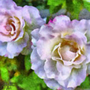 Two White Roses Art Print