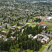 University Of Puget Sound U.p.s., Tacoma Art Print
