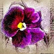 Vibrant Violet  Art Print