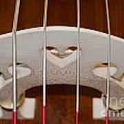 Violoncello Art Print