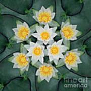 Waterlily Mandala Art Print