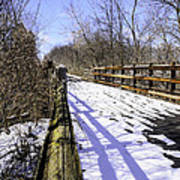 Winter On Macomb Orchard Trail Art Print