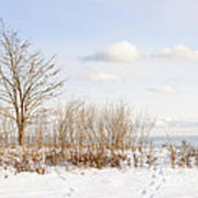 Winter Shore Of Lake Ontario Art Print