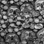 Human Bones. Art Print