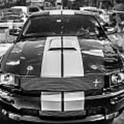 2007 Ford Mustang Shelby Gt500 Painted Bw  Art Print