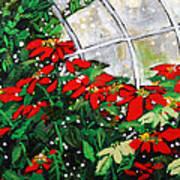 2013 010 Poinsettias And Dots Conservatory At The Us Botanic Garden Washington Dc Art Print