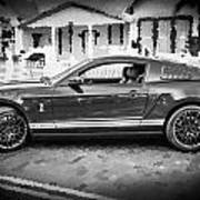 2013 Ford Mustang Shelby Gt 500 Bw Art Print