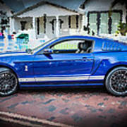 2013 Ford Mustang Shelby Gt 500  Art Print