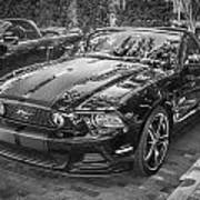 2013 Ford Shelby Mustang Gt 5.0 Convertible Bw  Art Print