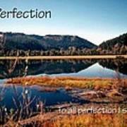 21042 Perfection 2 Art Print