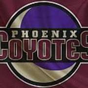 Phoenix Coyotes Art Print