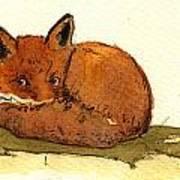 Red Fox 22 Art Print