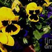 Love Flowers Art Print