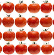 24 Tomatoes Art Print