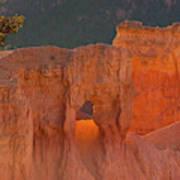 Usa, Utah, Bryce Canyon National Park Art Print