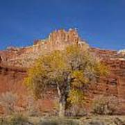 Capitol Reef National  Park Cathedral Valley Art Print by Mark Smith