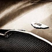 1953 Aston Martin Db2-4 Bertone Roadster Hood Emblem Art Print