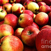 Apples Art Print by Olivier Le Queinec