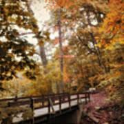 Autumn Awaits Art Print