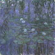 Blue Water Lilies Art Print