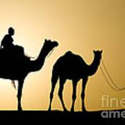 Camel Caravan, India Art Print