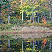 Crawford Notch State Park - White Mountains New Hampshire Usa Art Print