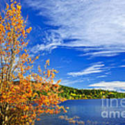 Fall Forest And Lake Art Print