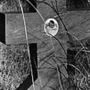 Film Noir Dana Andrews Linda Darnell Fallen Angel 1945 Child's Grave Ghost Town Golden Nm 1972 Art Print
